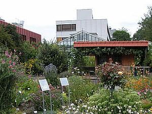 © Botanischer Garten Uni Würzburg