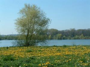 schwaebische-seenlandschaft
