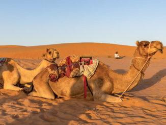 Urlaub im Oman